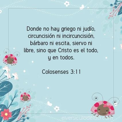 Imagen El versiculo del dia Colosenses 3:11