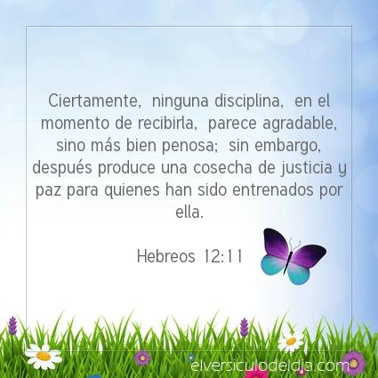 Imagen El versiculo del dia Hebreos 12:11