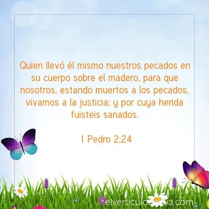Imagen El versiculo del dia 1 Pedro 2:24