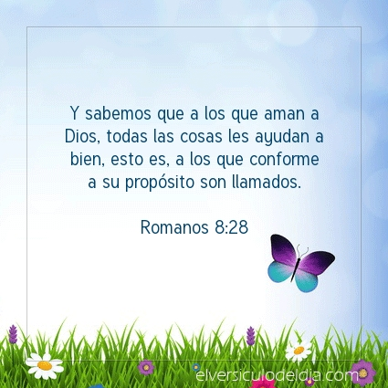 Imagen El versiculo del dia Romanos 8:28