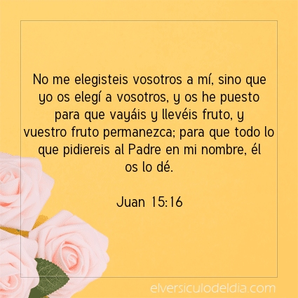 Imagen El versiculo del dia Juan 15:16