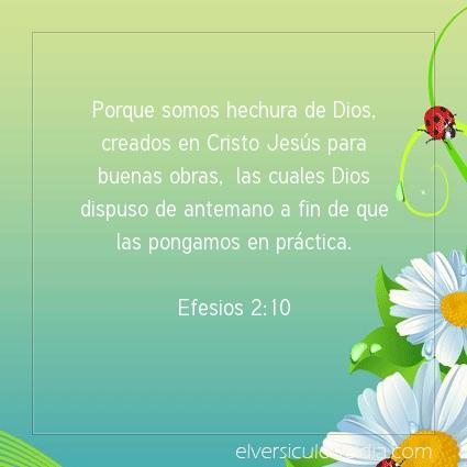 Imagen El versiculo del dia Efesios 2:10