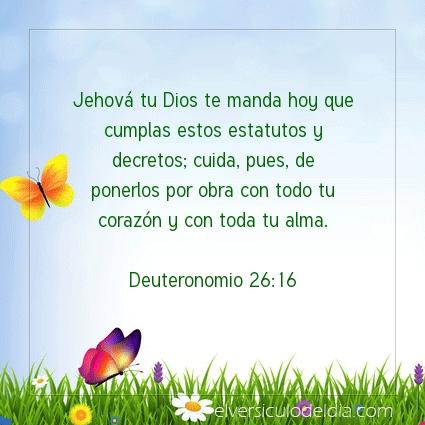 Imagen El versiculo del dia Deuteronomio 26:16