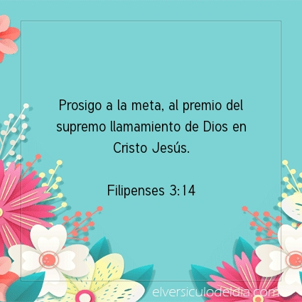 Imagen El versiculo del dia Filipenses 3:14