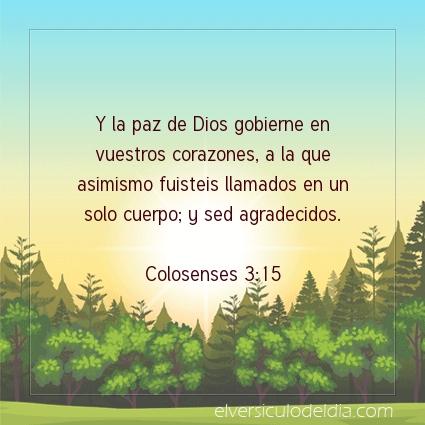 Imagen El versiculo del dia Colosenses 3:15