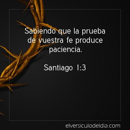 Imagen El versiculo del dia Santiago 1:3