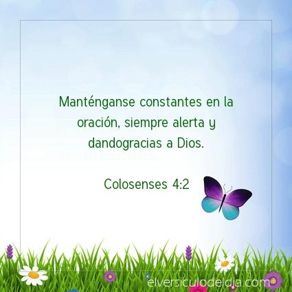 Imagen El versiculo del dia Colosenses 4:2