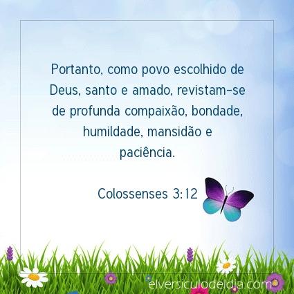 Imagem Verso do dia Colossenses 3:12