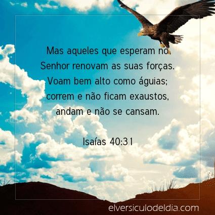 Imagem Verso do dia Isaías 40:31