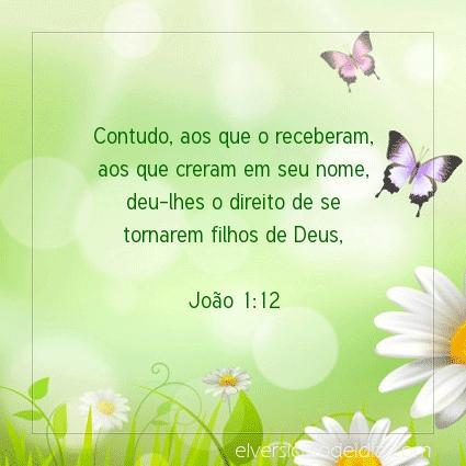 Imagem Verso do dia João 1:12