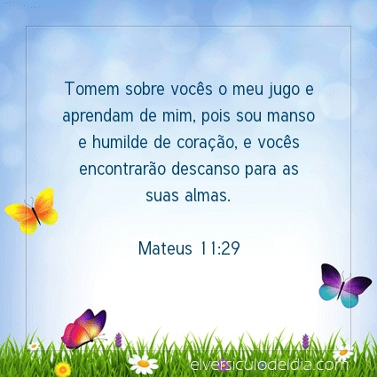 Imagem Verso do dia Mateus 11:29